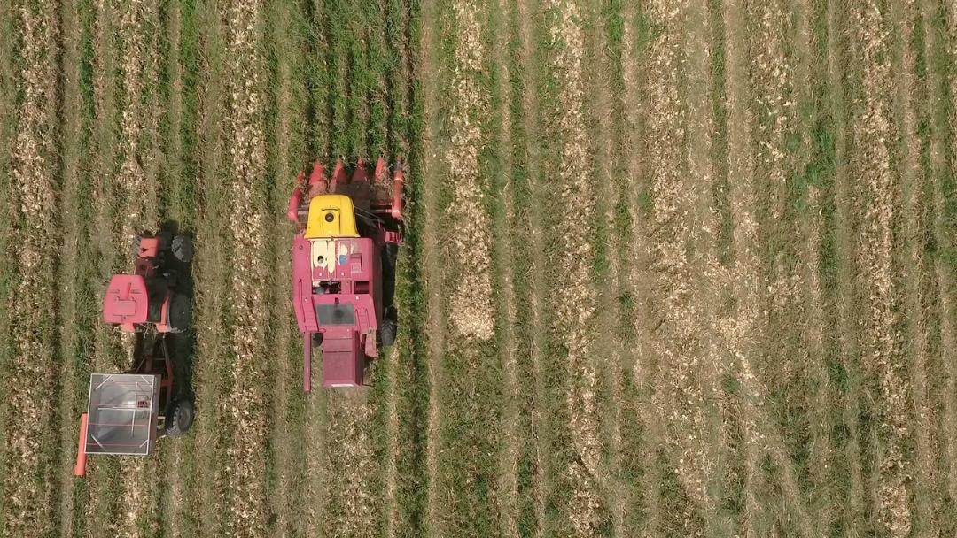 """Olivier Delahaye: """"En lo agrario, el siglo XXI prolonga el sigo XX"""""""