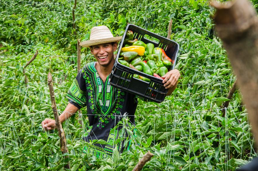 """Elías Jaua: """"La pequeña y mediana propiedad es la que más impacta en la producción nacional"""""""
