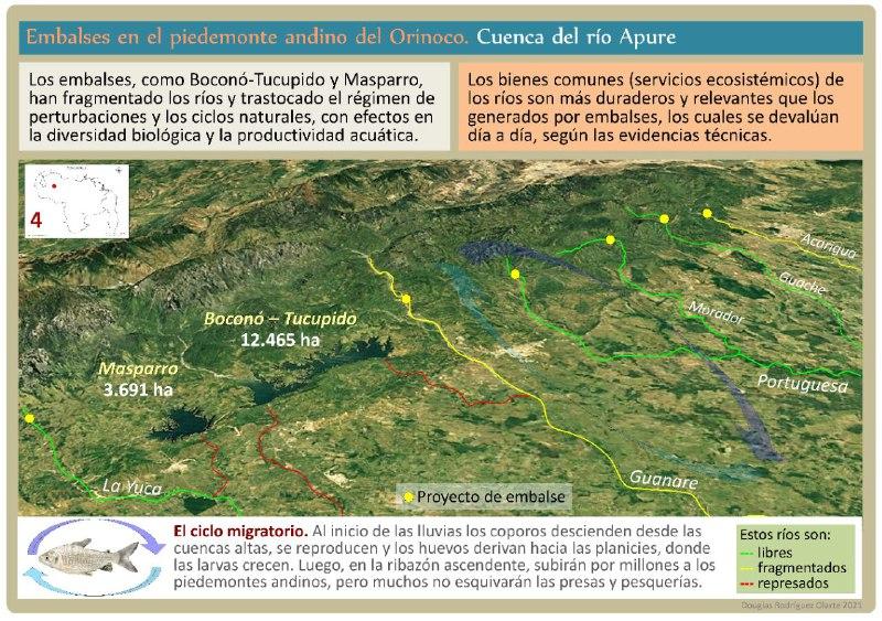 Embalses en el piedemonte andino del Orinoco. Cuenca del Río Apure. Rìos libres, fragmentados y represados